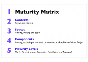 Maturity Matrix Overview